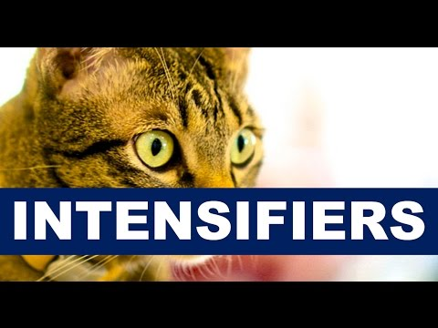 GCSE English Language Features: What is an Intensifier?