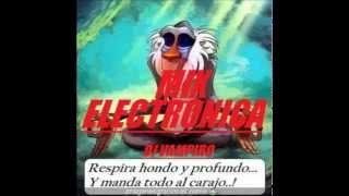 ELECTRONICA REMIX