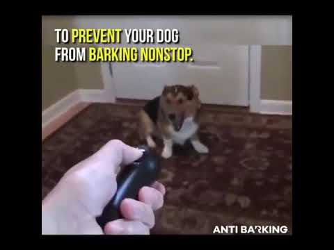 the-anti-barking-device-for-pets
