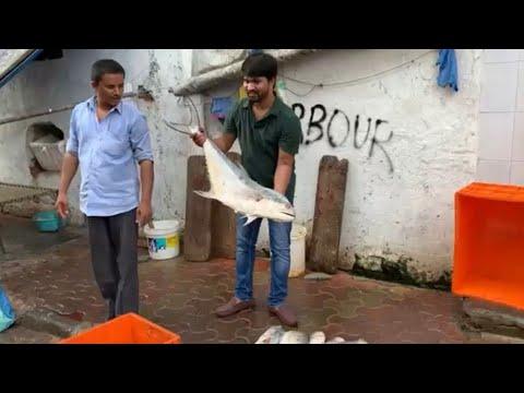 Fish Cutting And Cleaning Skill # Bigestfishmarket #Sasoon Dock