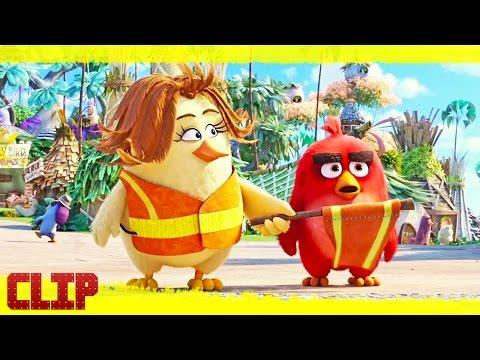 """Angry Birds. La Película Clip """"Red y Los Polluelos"""" Español"""
