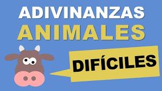 Adivinanzas de animales difíciles - TOP 10