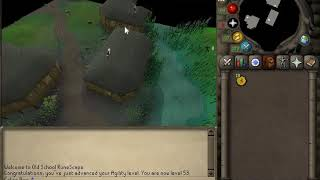 OSRS 1 Hour Of Canifis Agility Course