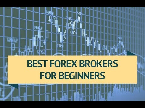 best-forex-trading-platform-|-top-5-best-forex-trading-software
