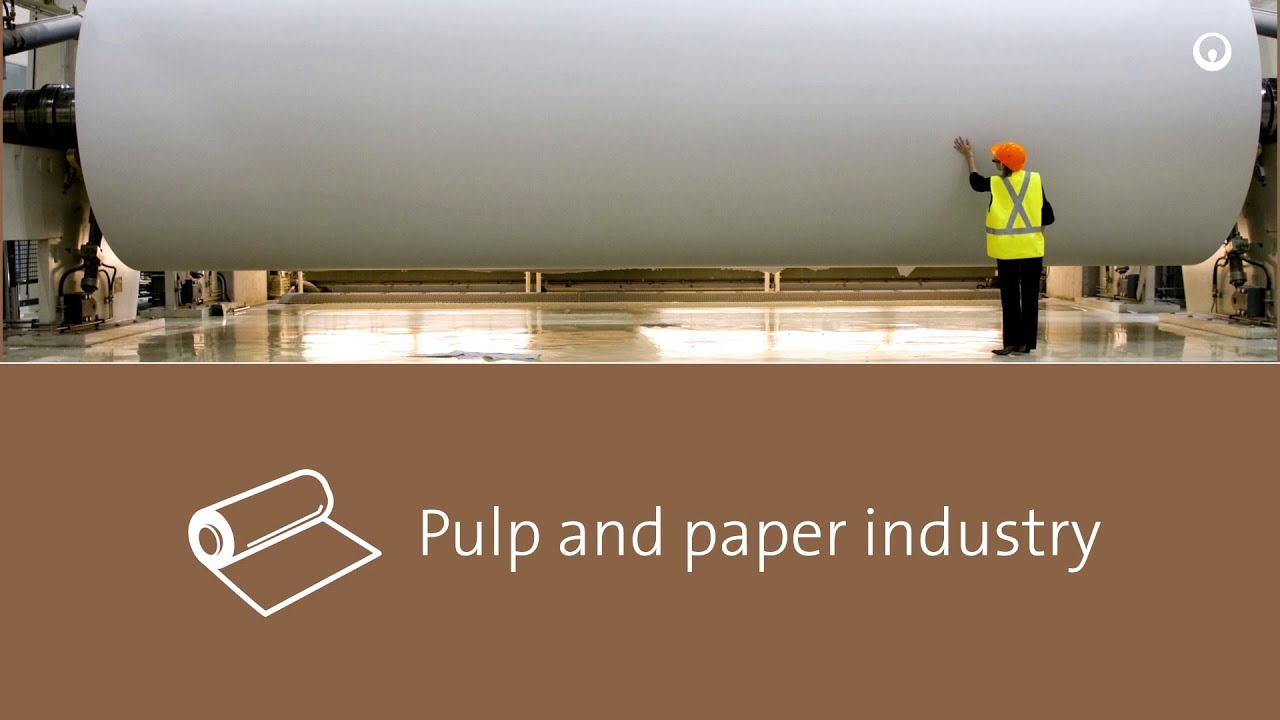 pulp and paper market About specialty pulp and paper chemicals the specialty paper segment is a niche section in the global paper market specialty paper is used to produce tailored and high-value solutions for writing, printing, packaging, and labeling applications.