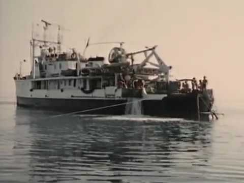 Jacques Cousteau Odyssey Lost Relics of the Sea