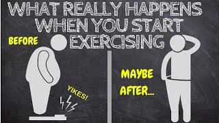 This Is What REALLY Happens As You Start Exercising (Animated)
