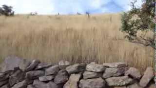 Paseo en el rancho la Huerta Jalisco