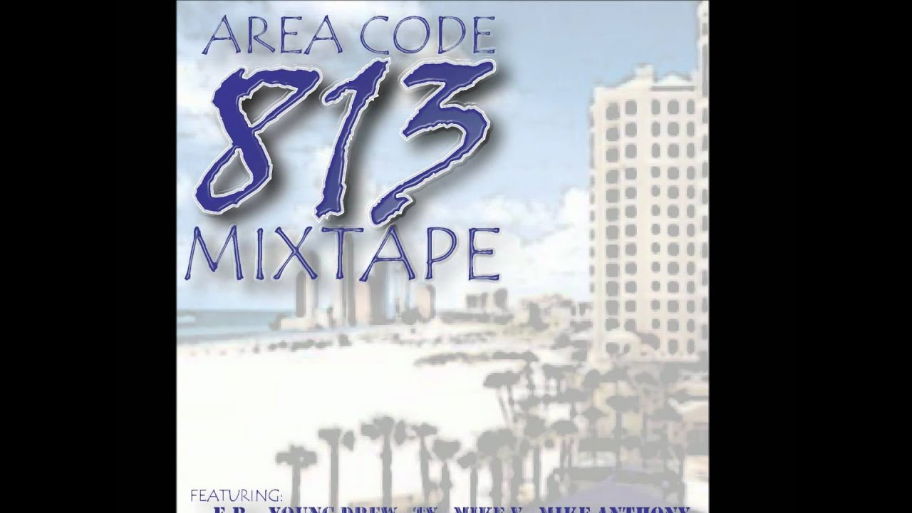 what area code is 813 located