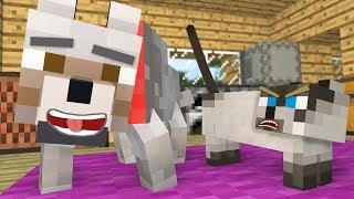 Wolf Life Vs Cat Life - Minecraft Animation