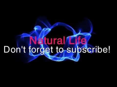 Penis Enlargement Exercise   Natural Life