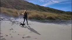 Domburg mit Hund 🐾