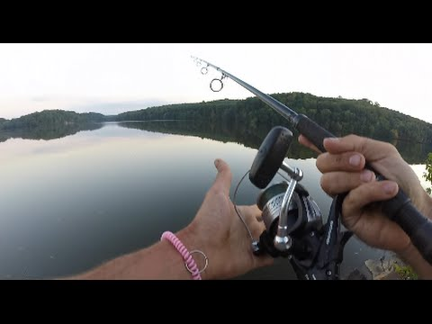 Video Catfish fishing tournament