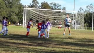 soccer game u6 s