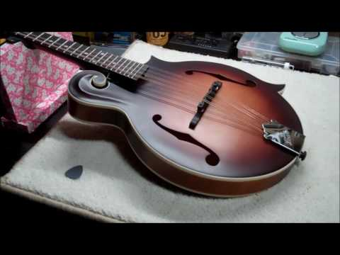 The Loar LM-310 Mandolin Review - Perfect for Guitarists/Beginners