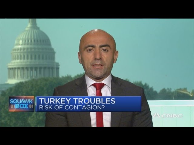 Turkey's economy was showing signs of slowdown before crisis, says pro