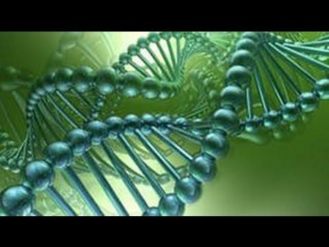 МАЛОИЗВЕСТНЫЕ ФАКТЫ О ДНК