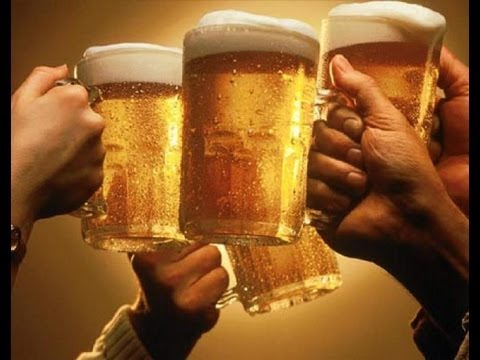 BEER 101 - Everything you NEED to know about BEER