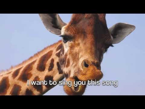 the mrbrown show: the giraffe song