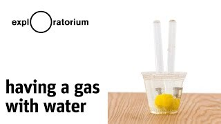 Having a Gas with Water- Science Snack Activity