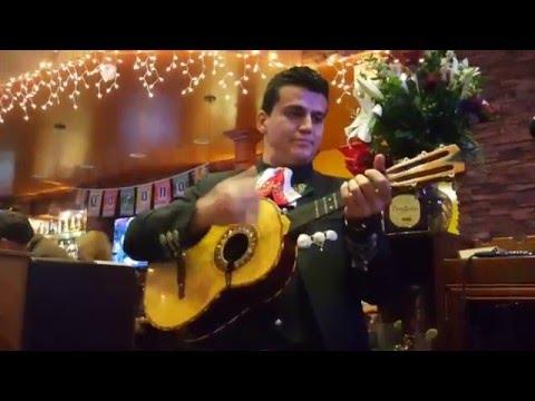 mariachi camarillo- la bikina (vihuela solo)