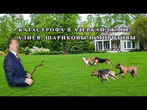 Talyshistan Tv 07.12.2016 News in azerbaijani: Катастрофа в Азербайджане: Алиев, шариковы и морозовы