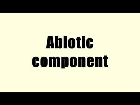 Abiotic component