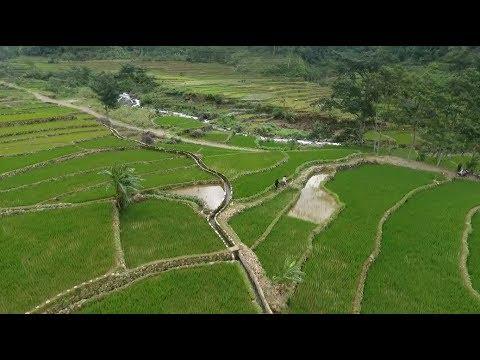Indonesia Bagus : Jepara, Kota Dan Desa Tiada Dua