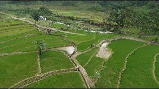 Indonesia Bagus Jepara Kota Dan Desa Tiada Dua