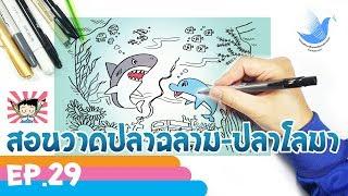 วาดการ์ตูนปลาฉลามกับปลาโลมาง่ายๆ (Shark&Dolphin) EP 29