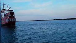 Dolphin watching Corpus Christi Texas