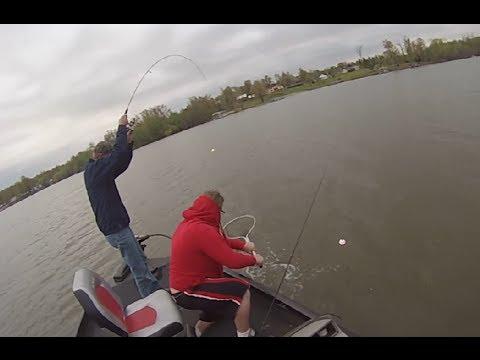 Cat Fishing Kentucky Lake W Live Minnows