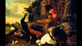 Giuseppe Torelli : Sonate a cinque