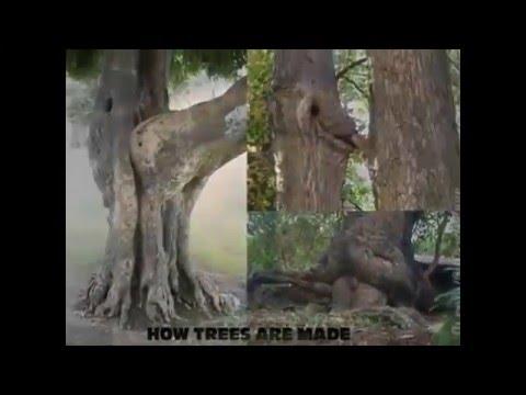 Video Lucu Penipu Mata Bikin Tercengan Youtube