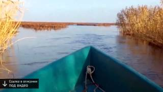 Рыбалка видео ролики, интересные сюжеты | Все видео о рыбалке