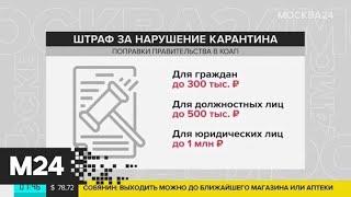 Какое наказание могут ввести за нарушение режима самоизоляции - Москва 24