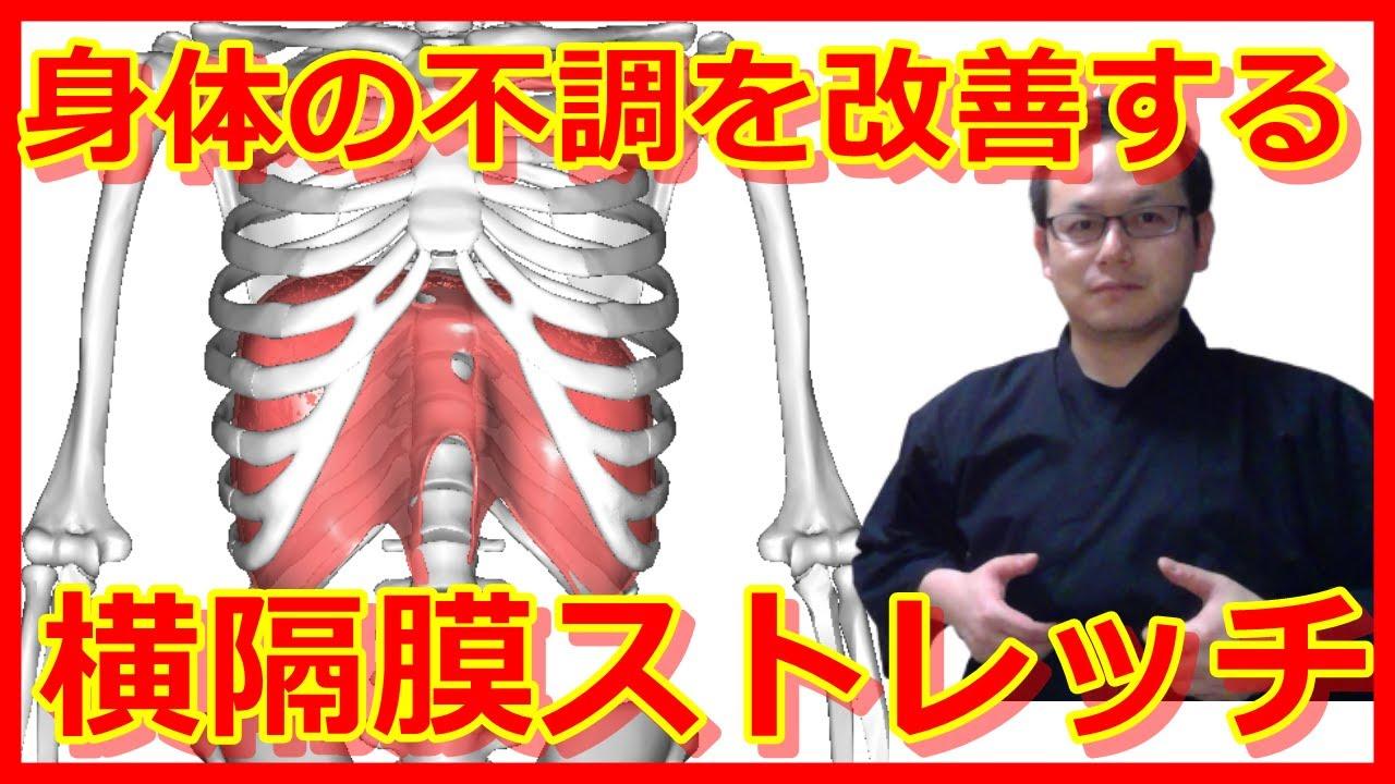 ストレッチ 横隔膜 <ゴルフと筋肉>お腹のインナーマッスルのストレッチ ゴルフと筋肉 GDO ゴルフレッスン・練習