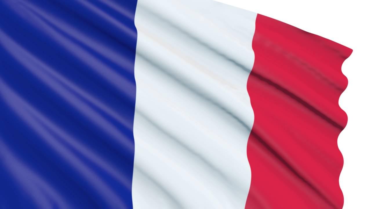 Banderas Animadas De Francia