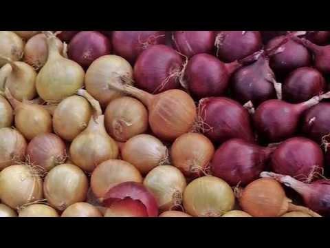 Урожайная грядка - urozhayna-