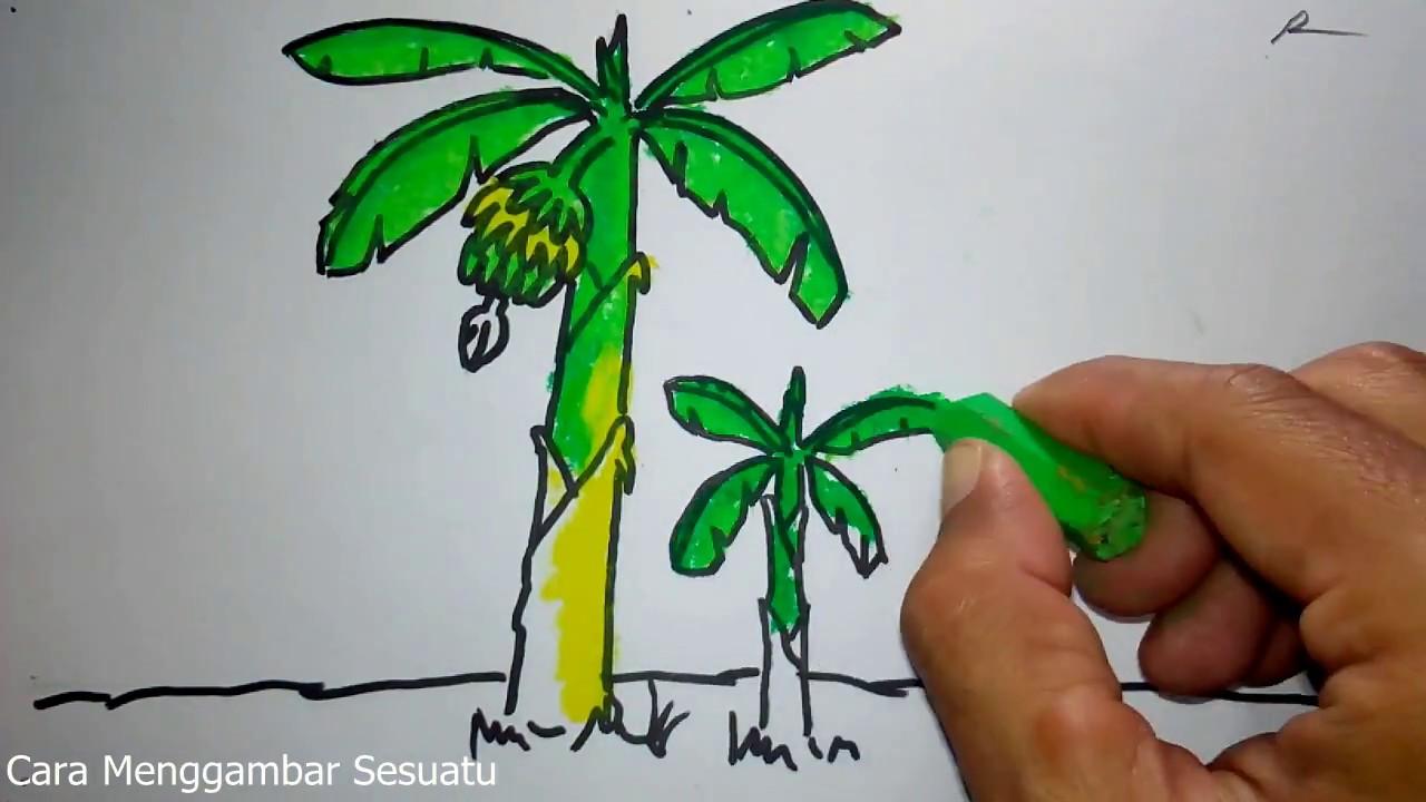 cara menggambar pohon pisang untuk anak