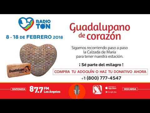 Radioton En Vivo