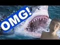 A SHARK BIT ME!??