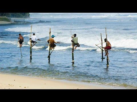 Sri Lanka hopes to boost tourism under Belt and Road Initiative
