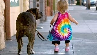 Малыши и собаки прогуливают друг друга