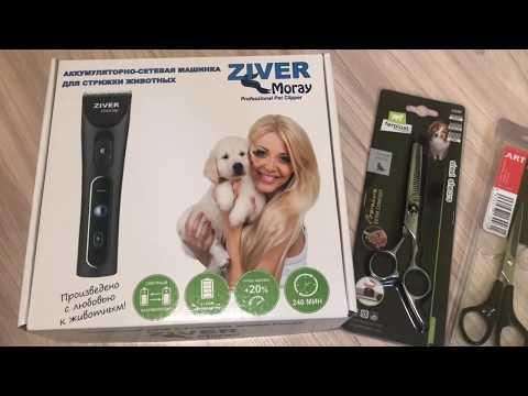 Покупочки для грумминга собачек, машинка для стрижки Ziver