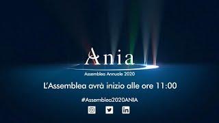 ANIA Assemblea Annuale 2020