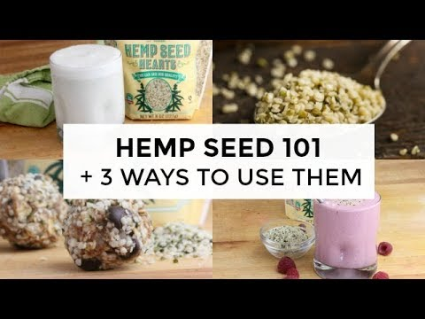 Hemp Seed 101 | Everything You Need To Know