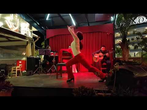 Tenerife Flamenco @ El Embrujo restaurant, Las Americas