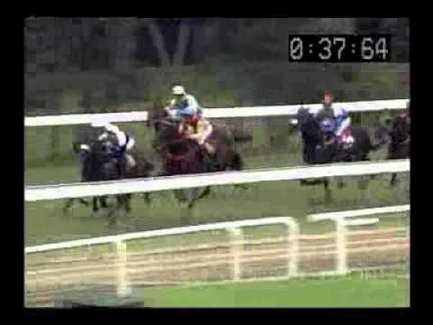 ม้าแข่งสนามฝรั่ง เสาร์ที่ 6 กค.56 เที่ยว 1