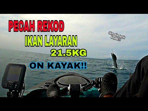 REKOD IKAN LAYARAN ON KAYAK .. KAYAK FISHING MALAYSIA .. VLOG # 42